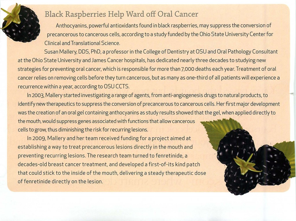 Black Rasperries Help Ward off Oral Cancer